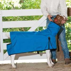 Cordura Goat Blanket