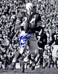 Y.A. Tittle autograph 8x10, San Francisco 49ers, HOF 71