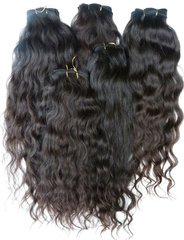 Virgin Indian Curly
