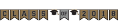 """""""2018"""" Grad Class Of 2018 Plastic Pennant Banner - Black, Silver, Gold"""