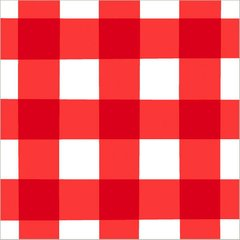 American Summer Red Gingham Luncheon Napkins