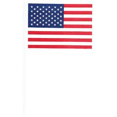 American Flag - Cotton/Plastic