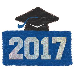 2017 Grad Tinsel Decoration - Blue