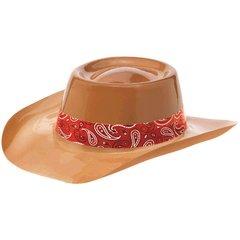 Western Cowboy Hat W/Band