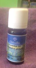 OSHADHI EUCALYPTUS GLOBULUS- 10 ML