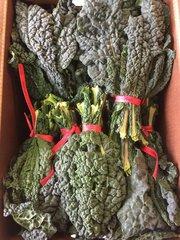 Veg.o_Two EE's Farm Organic Black Kale 1 Bunch 本地Two EE农场有机黑芥蓝1扎