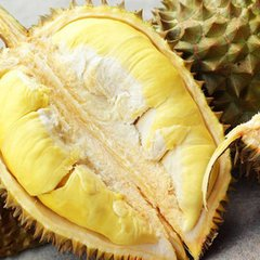 Pro_Thailand Fresh Durian 泰国精品金枕头5.5磅颗