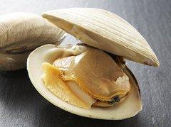 Seafood_Live clam 2.5 lbs bag 新鲜哈利2.5磅袋