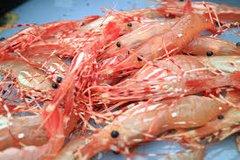 Local Spot Prawn 20 lbs 鲜活斑点虾20磅盒(周二)