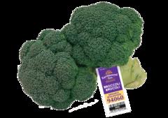 Organic broccoli 2lbs 有机西兰花2磅