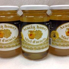 RO_Honey Bear Acacia Honey 500g (No shipping Pick-Up Only)