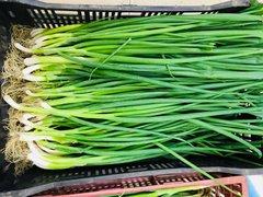 Veg.o_Local Farm organic green onion one 0.5 lb/bunch本地慈心农场有机青葱0.5磅扎
