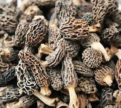 Veg_No.1 Morchella vulgaris 1 lb/bag 一级干羊肚菌1磅袋