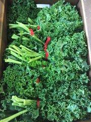 Veg.o_Two EE's Farm Organic Green Kale 1 Bunch 本地Two EE农场有机绿芥蓝1扎