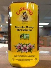 Australia Manuka Honey_375g 澳洲康蜜乐麦卢卡蜂蜜-茶花树 375克