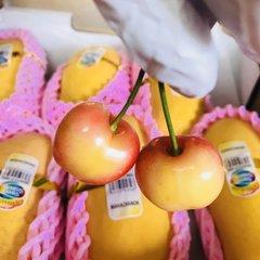 Pro_Rainier Cherry 2lbs空运黄樱桃2磅
