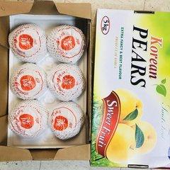 Pro_Korean Jumbo Pear one counts 正宗韩国最大号新高梨一颗(约1.8磅)