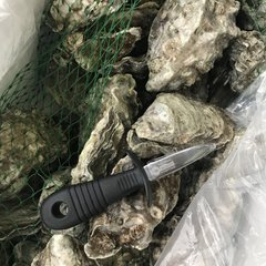 Oyster Open Tool/生蚝开启刀