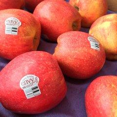 Pro.Org_Washington Organic Envy apple 10 pcs/bag 华盛顿有机爱妃苹果10颗袋