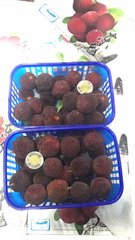 Sweet Bayberry 4 boxes 【空运最新到】大号东魁杨梅4盒(包甜)长方盒