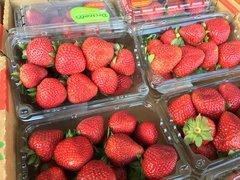 Organic Sweet strawberry 2lb 加州新鲜有机草莓1磅盒2盒