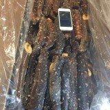 Frozen Sea Cucumber 44lbs 【中国直送到家,特别推荐/送礼、自用】 最新捕捞冰鲜阿拉斯加红刺参44磅箱
