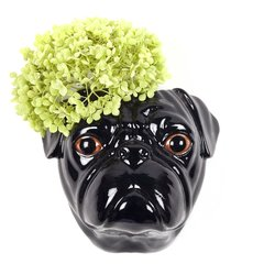 Black Pug Wall Vase by Quail
