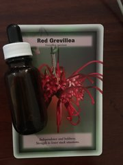 BFE - Red Grevillea Dosage Bottle 25ml - Independence & Boldness. Strength to leave Stuck Situations
