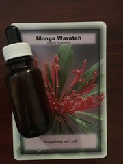 BFE - Monga Waratah Dosage Bottle 25ml - Stengthening of One's Will, Clearing Co-Dependency