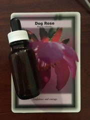 BFE - Dog Rose Dosage Bottle 25ml - Self Belief, Confidence, Courage to Embrace Life, Overcoming Fear, Shyness and Insecurity