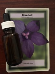 BFE - Bluebell Dosage Bottle 25ml - Opens the Heart increasing Universal Trust and Belief in Abundance.