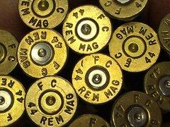 .44 Remington Magnum, Federal, Brass 50
