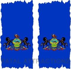 Pennsylvania Flag Cornhole Cover