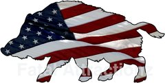 American Flag Wild Hog