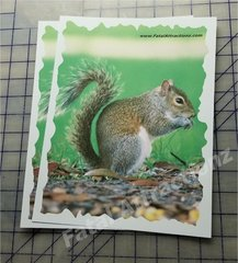 Shooting Target Squirrel color