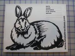 Shooting Target Rabbit