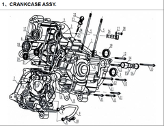 250cc Case Assembly