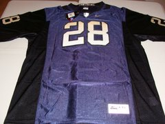 #28 PITTSBURGH Pitt Panthers NCAA Football Blue Mint Throwback Jersey