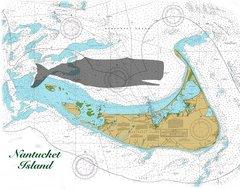 Nantucket Island, Massachusetts 1957 Nautical Chart