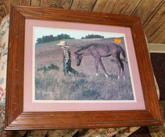 Boy and Colt Wood Framed Print by Jim Daly