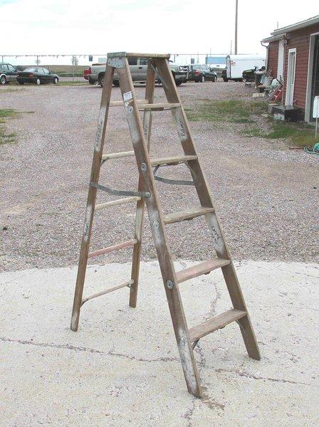 "Columbia Step 65"" Ladder-Wood"