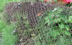 6' Chain Link Fencing-50' Plus Roll