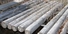 11-8' Non-Treated Fence Posts