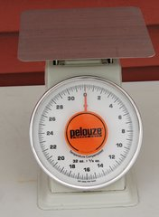 Pelouze Heavy Duty Platform Scale