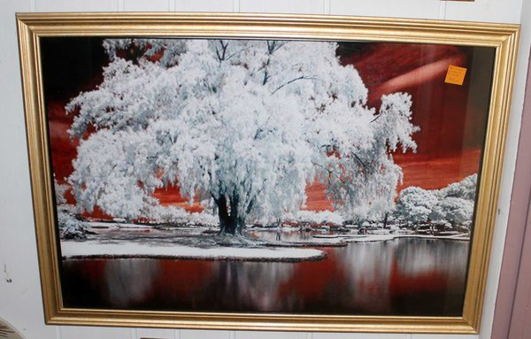 Wintery Gold Framed Photo