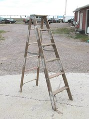 "Columbia Step 65"" Ladder-Wood"