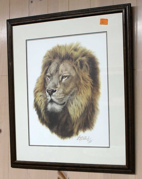 """""""African King"""" Lion Framed & Signed Guy Coheleach"""