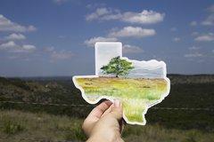 Texas Decal - Texas Sticker