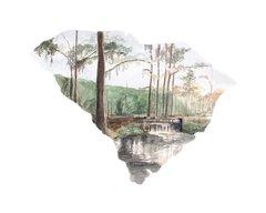 South Carolina State Art Print