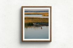 Chincoteague Marsh Photo